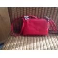 money bag rood